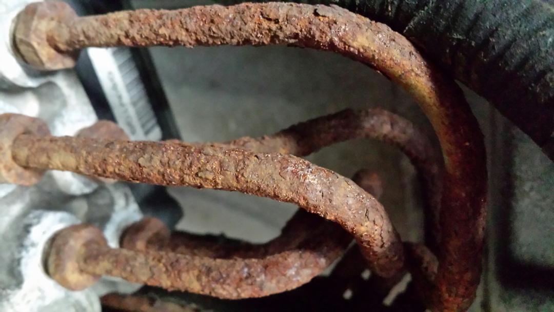 Import Intelligence Expert Automotive Repair